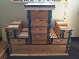 Eco Bee Box