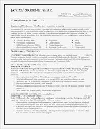 Car Sales Resume Lovely Fresh Lease Agreement Template Pdf Format Of