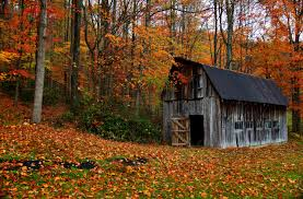 File:Autumn-country-barn - Virginia - ForestWander.jpg - Wikimedia ... 24x40x12 Residentiagricultural Barn In Ashland Va Rmh14012 Another Beautiful Old Tobacco Barn Pittsylvania County Virginia Metal Garages Barns Sheds And Buildings Tomahawk Ribeye 46oz From Aberdeen Beach The Sierra Vista Wedding Venues Pinterest June 2017 Roadkill Crossing Mail Pouch Southern Indiana This Is A Few Mil Flickr Green Bank West On Farm Rural Pocahontas Tobacco Reassembled Albemarle Joseph Windsor Castle Smithfield Va These Days Of Mine Barnscountry Living