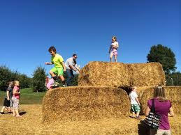 Grandville Mi Pumpkin Patches by 7 Things To Do With Kids This Fall In Grand Rapids Mi