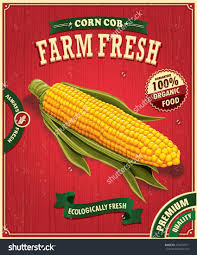 Vintage Farm Fresh Corn Poster Design Stock Vector Illustration Shutterstock Houses And Floor Plans