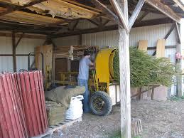 Christmas Tree Baler Used by Family Ardysez