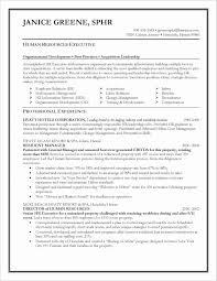 Professional Summary For Nursing Resume New Professional Summary For ...