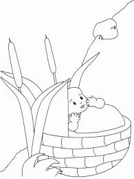 Nw Babymoses Bible Coloring Pages