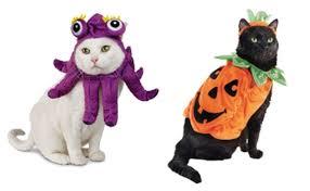 cat batman costume pumpkin and batman costumes top pet costume choices for
