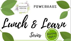 100 Powerhaus Lunch And Learn Series January At San Diego