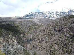 Shed Hunting Southern Utah by Utah Bear Hunt Monstermuleys Com