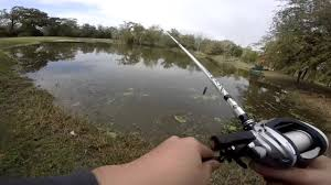 Fishing A Backyard Pond - YouTube Diy Backyard Fishing Activity 3br House Boating Or From The Naplesflorida Landscaping Vancouver Washington Complete With Large Verpatio Six Mile Lakemccrae Lake July 1017 15 Youtube Pond Outdoor Goods Nick Wondo In Spin More Poi Bed Scanners Patio Heater Flame Tube Its Koi Vs Heron Chicago Police Officer In Epic Can Survive A Minnesota Winter The 25 Trending Ponds Ideas On Pinterest Ponds Category Arizona Game And Fish Flagstaff Stem City