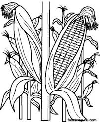 Printable Vegetables Corn Coloring Page