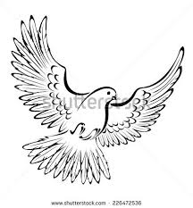 Drawn dove front view 11