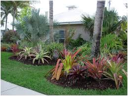 Backyards: Beautiful Tropical Backyard Plants. Simple Backyard ... Tropical Garden Landscaping Ideas 21 Wonderful Download Pool Design Landscape Design Ideas Florida Bathroom 2017 Backyard Around For Florida Create A Garden Plants Equipment Simple Fleagorcom 25 Trending Backyard On Pinterest Gorgeous Landscaping Landscape Ideasg To Help Vacation Landscapes Diy Combine The Minimalist With