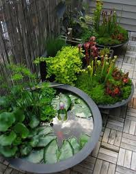 Aquascape Patio Pond Australia awesome pond pot container water garden next to a couple