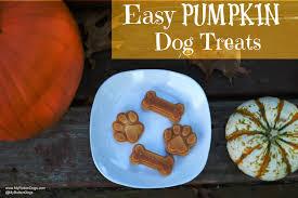 Fresh Pumpkin For Dog Diarrhea by My Rotten Dogs