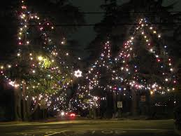 Best Type Of Artificial Christmas Tree by Christmas Tree Lane Wikipedia