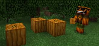 Best Pumpkin Seed Minecraft Pe by Uncarved Pumpkin Texture Pack Minecraft Pe Texture Packs