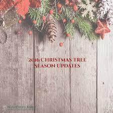Krinner Christmas Tree Genie Large by Krinner Christmas Tree Genie Xxl Christmas Ideas