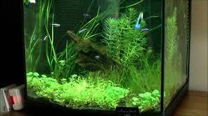 robinet baignoire pas cher 10 aquarium litres 57470 chaise