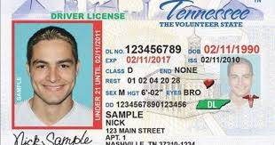 How Do I Restore My Driver's License In Tennessee? Truck Driver Traing Official Ncdmv Commercial License Trucking With Weasel The Drivers Euro Simulator 2 Driving Tickets Ny Wayne Brothers Is Currently A Cdl To Transport Small Undocumented Immigrant Law Fails Boost Number Of Trucks Idaho How To Get A Academy School In San Bernardino Cdl Antonio Read Book Exam Test Preparation Driving License School Chicago By Columbiacdl Issuu Trucker Job Related Vector Image