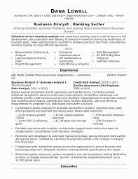 Company Portfolio Sample Resume New Format For Banking Sector Lovely Brand Financial