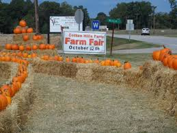 Pumpkin Patches In Colorado Springs 2014 by 16 Awesome Corn Mazes In Sc You Have To Do This Fall