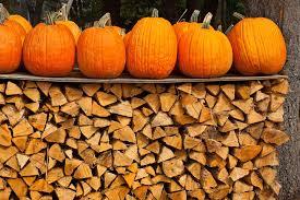 Varieties Of Pumpkins Uk by 7 More Things You Didn U0027t Know About Pumpkins Tastemade