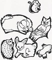 Coloring Pages For The Mitten By Jan Brett