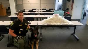 50 Pounds Of Meth Seized From Truck After Traffic Stop On I-5 In ... Success Stories Teslas Electric Truck Is Comingand So Are Everyone Elses Wired Robbery Suspect Shot By Authorities At Valdosta Truck Stop Tony The Tiger Latest News Breaking Headlines And Top Stories Stop Ultimate Competitors Revenue Employees Owler A Highend Mover Dishes On Truckstop Hierarchy Rich People Showers Heres What Theyre Really Like Youtube Less Lonely Road Lauren Pond Photography Our Story Tfc Global Updates Page 59 Of Stanley Springs Dayton Parts Llc This Morning I Showered At A Girl Meets Cooking With Dysarts Cbook Restaurant