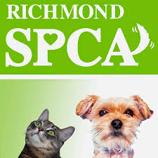 Richmond Spca: Dog Boarding Richmond Va Training Holiday Barn Pet ... Holiday Barn On Twitter We Are Happy To Donate This Adorable A Place Where Doggies Paddle Life Richmondcom Ipirations West Elm Hollywood Georgetown Letters Santa Paws Bellas Visits Holiday Barn Pet Resorts Doggie Daycare April Unique Tradition Lives In Valentines Va News And The History Of Pet Resorts Skye Is Proud Present Holidaybarn 30 Cool Sites Visit Within 100 Miles Richmond Travel