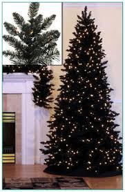 Slim Pre Lit Christmas Trees by Skinny Pre Lit Christmas Trees