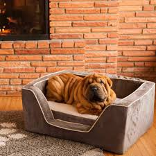 Top Rated Orthopedic Dog Beds by Luxury Square Dog Bed With Memory Foam By Snoozer Pet Products