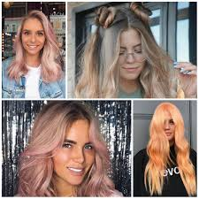 Breathtaking Newest Dark Hair Colors Photo Hairstyle Ideas