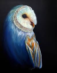 Barn Owl Giclee Print - Contentment In Color Owl - Colored Pencil ... Photographs Of Barn Owls Leigh Ornithological Society 110317 Greenscape Environmental Owl In Flight Limited Edition Print By Robert E Fuller Designstuff Charming 3 Clotheshopsus Vintage Poster Barn Owl Birds Pinterest Owls Day 207 Katy Lipscomb Online Store Powered Never Lose Hearing Youtube Best 25 Sounds Ideas On Beautiful Its Time To Decorate For Fall Wisdom Art Miss Majewiczs Emporium The Heart Facts Pictures Diet Breeding Habitat Behaviour