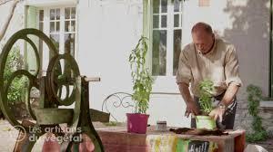 comment planter et cultiver un basilic en pot