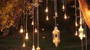 light bulbs outdoor on a wire against dusk forest concept