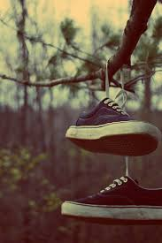 Vans On The Tree Outdoors Shoes Autumn Leaves