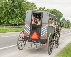 Pumpkin Picking Farms In Lancaster Pa by Amish Buggy Ride U0026 Farm Tour For Family Of 4 Lancaster Pa