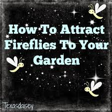Attracting Insects To Your Garden by Learn How To Attract Fireflies To Your Yard Or Garden Garden