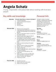 Sample Resume High School Student No Job Experience