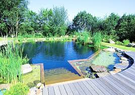 piscine naturelle piscine naturelle piscines