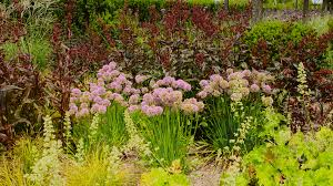 15 top plants of the pacific northwest