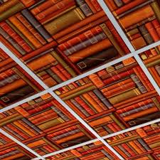 drop ceiling tiles another dropin ceililng i can handle white