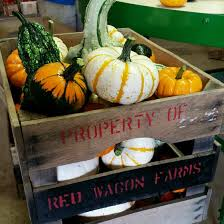 Ohio Pumpkin Festivals 2017 by The Red Wagon Farm U Pick Strawberries And Fresh Local Produce