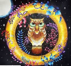 Owl Enchanted Forest Coruja Floresta Encantada Johanna Basford Coloring BookAdult