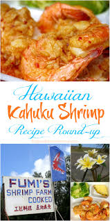 Shrimp Archives | The Good Hearted Woman Food Truck On Oahu Humans Of Silicon Valley Plate Lunch Hawaiian Kahuku Shrimp Image Photo Bigstock Famous Kawela Bay Hawaii The Best Four Cantmiss Trucks Westjet Magazine Stock Joshuarainey 150739334 Aloha Honolu Hollydays Fashionablyforward Foodie Fumis And Giovannis A North Shore Must Trip To Kahukus Famous Justmyphoto Romys Prawns Youtube Oahus Haleiwa Oahu Hawaii February 23 2017 Extremely Popular