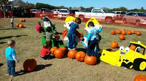 Grapevine Texas Pumpkin Patch by Pumpkin Patch In Flower Mound Tx Youtube