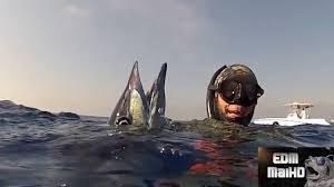 Juego Pesca El Pez Manualidades De Juguetes Caseros Para Niños