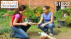 Backyard Science   S1E22   Make Your Own Mini Greenhouse - YouTube Backyard Science S1e17 Make Your Own Budget Movies Youtube 10 Experiments For Kids Parentmap 685 Best Images On Pinterest Steam Acvities S2e9 How To Double Pocket Money Amazoncom Seiko Mens Srp315 Classic Stainless Steel Automatic The Gingerbread Mom Page 6 S2e4 Blow Weird Wacky Bubbles S1e5 To Measure Wind Birds Clock Supports Project Feederwatch Cuckoo Ideas Of Watch The Scientist Molten Metal Gun Video Diy Sci Show Archives Lab