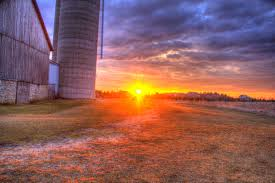 Free Stock Photo Of Landscape And Sunset Behind The Barn At ... Tammie Dickersons Arstic Journey September 2014 The 7msn Ranch Breakfast From Behind The Barn John Elkington Caroline From 0 To 60 In Well Years Sunrise Behind A Barn On Foggy Morning Stock Photo Image 79809047 Red Trees 88308572 Untitled Document Our Restoration Preserving History Through Barnwood Rebuild Tornado Forming Old Royalty Free Images Sketch For By Hbert Sidney Palmer At Consignorca Shed Olper And Fustein Innervals Vals Valley Towering Sunflower Growing Beside Bigstock