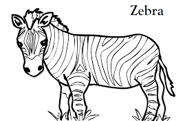 Cozy Ideas Animal Print Coloring Pages Zebra Page