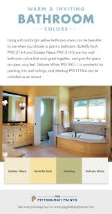 Best Paint Color For Bathroom Walls by Best 25 Colors For Bathrooms Ideas On Pinterest Modern Paint